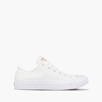 Converse Chuck Taylor All Star 167226C